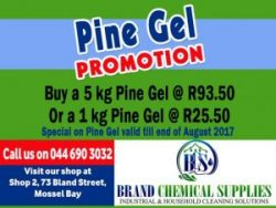 Pine Gel Special at Brand Chemical in Mossel Bay
