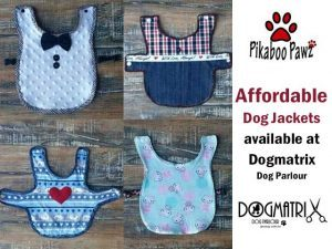 Dog Accessories available in Mossel Bay