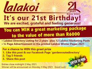 Win a Lalakoi Business Marketing Package