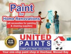 Paint for Home Renovations